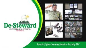 De-Steward Security